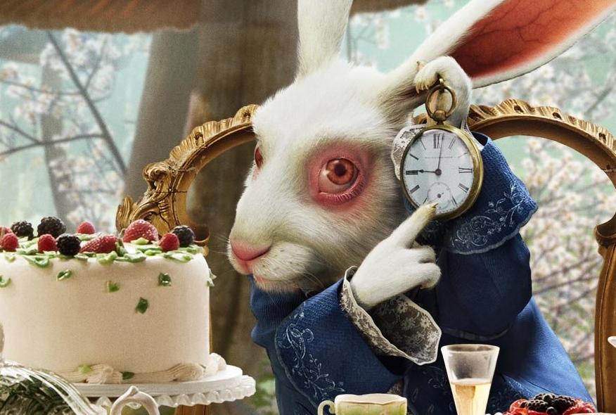 conejo-blanco-tinder